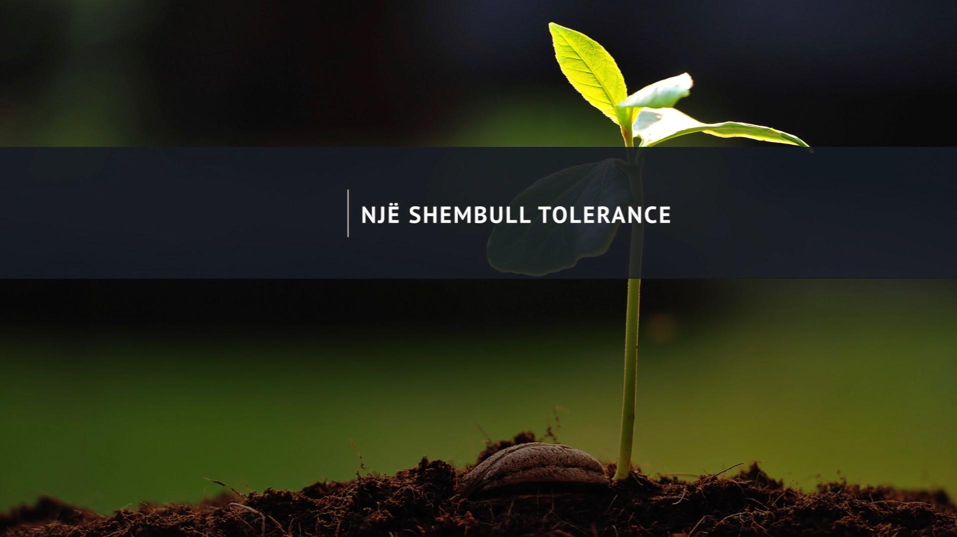 NGJARJE / Një shembull tolerance